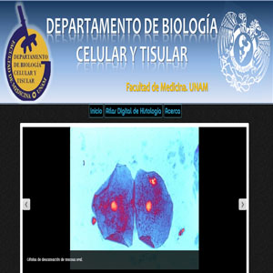 Atlas digital de histología